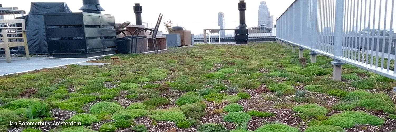RESILIO blauw-groene daken Jan Bommerhuis