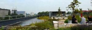 Subsidie beschikbaar voor particuliere blauw-groene daken
