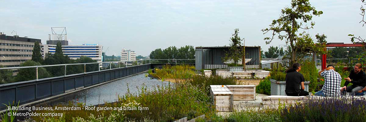 RESILIO Blue Green Roofs - MetroPolder 004
