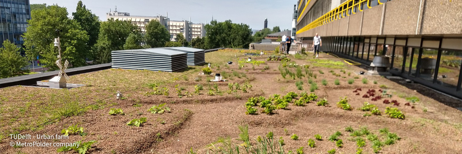 RESILIO Blue Green Roofs - MetroPolder 005
