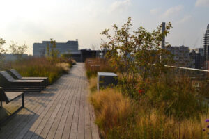 Blue-Green roofs as accessible space in 1.5-meter distance world?