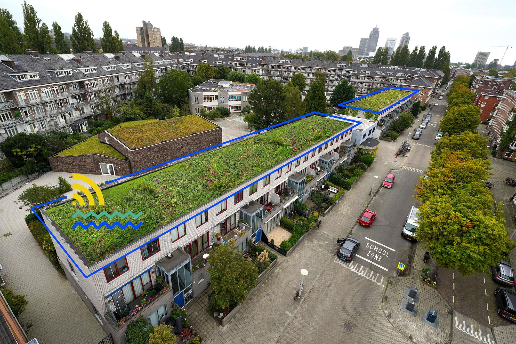 RESILIO - Blauw groene daken - Rivierenbuurt
